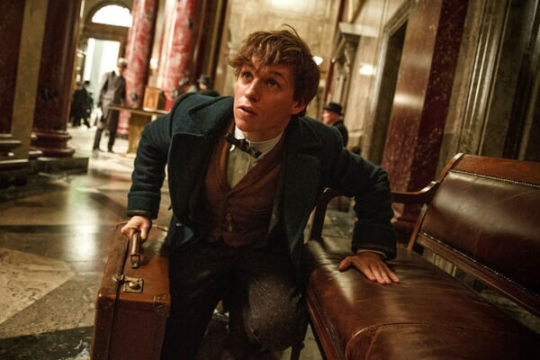 Fantastic Beasts and Where to Find Them - Image - Afbeelding 4